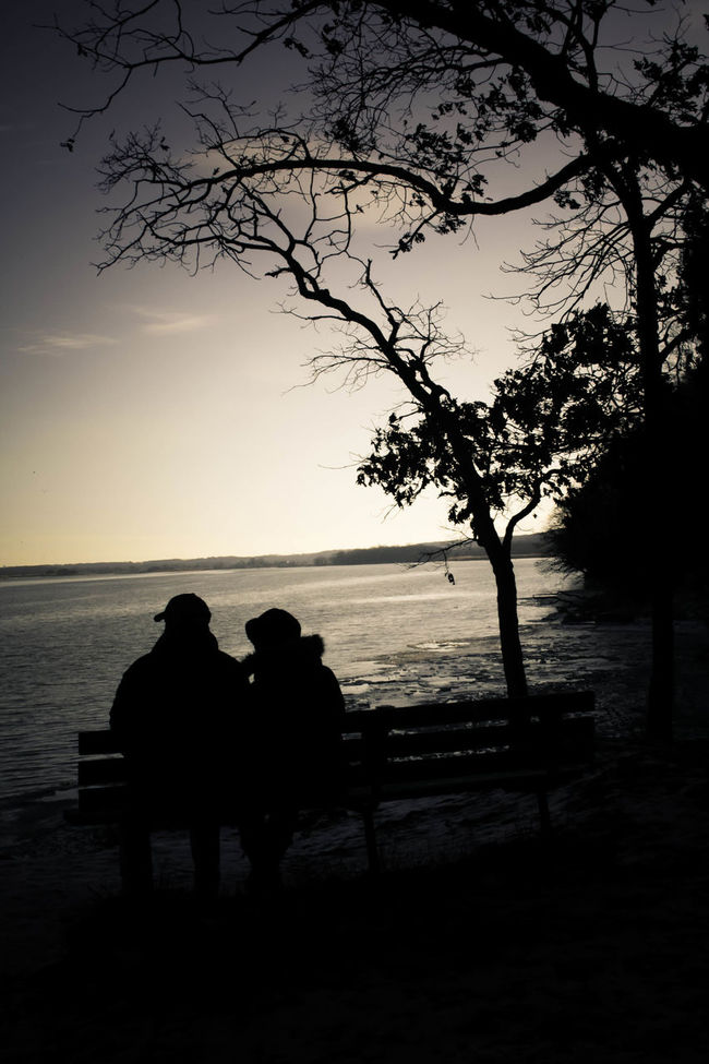 Beauty In Nature Couple Horizon Over Water Idyllic In Love Leisure Activity Lifestyles Mammal Married Couple Nature Older Couple Outdoors Relaxation Scenics Silhouette Sitting Sky Sunset Tranquil Scene Tranquility Tree Water Winter Winter In Love Winter Scene