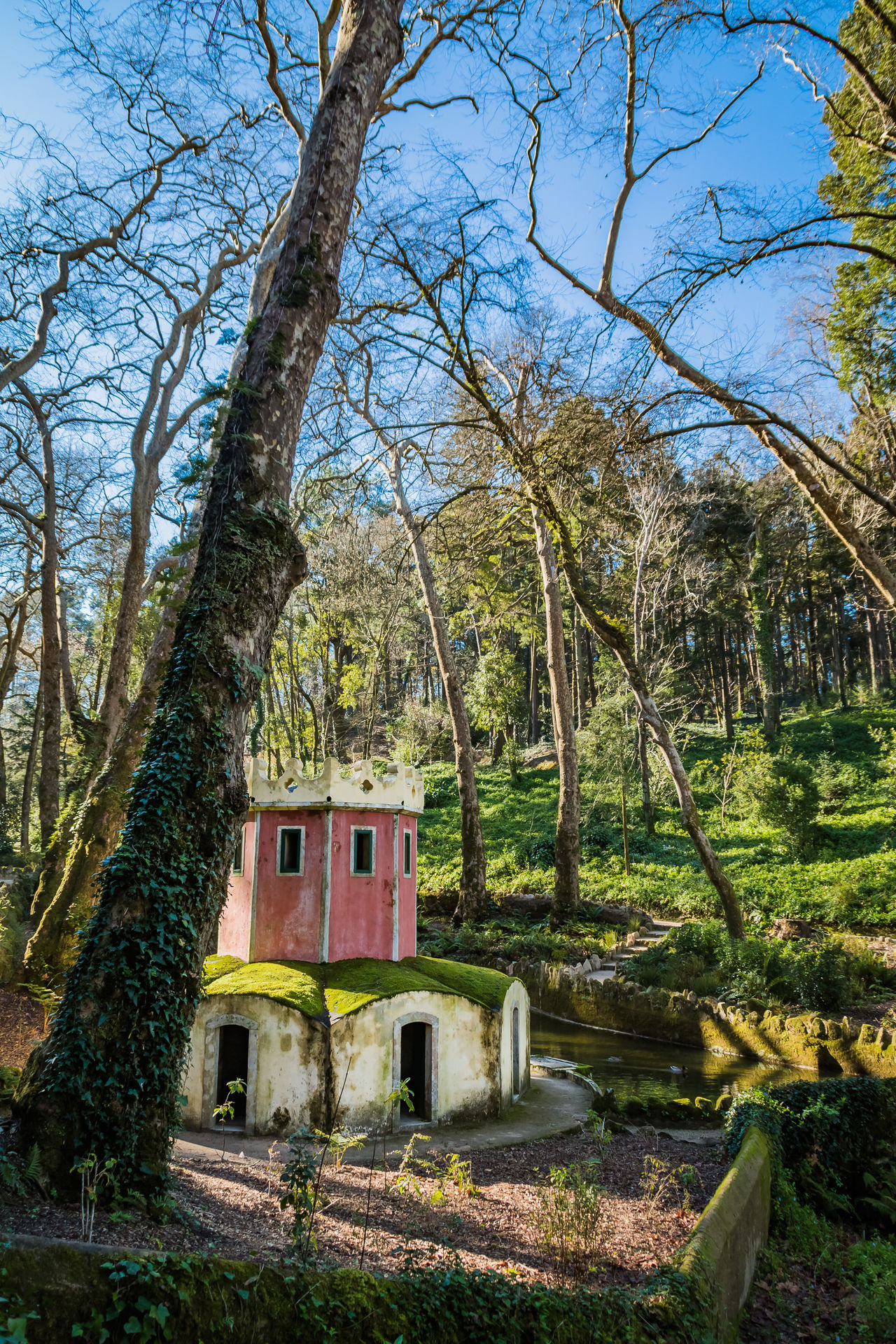 Ancient Architecture Architecture Beauty In Nature Building Exterior Built Structure Colors Day Gardens Growth Hiking Historical Building Majestic Monuments Nature No People Outdoors Palace Picturesque Ruins Sintra (Portugal) Sky Town Trails Tree