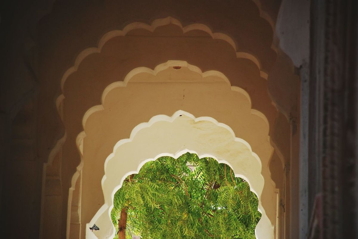 Architecture in Rajasthan, India - Pattern Colors Travel Photography Building Alcoves Geometric Shapes Green Decoration Nature Illuminated No People Low Angle View