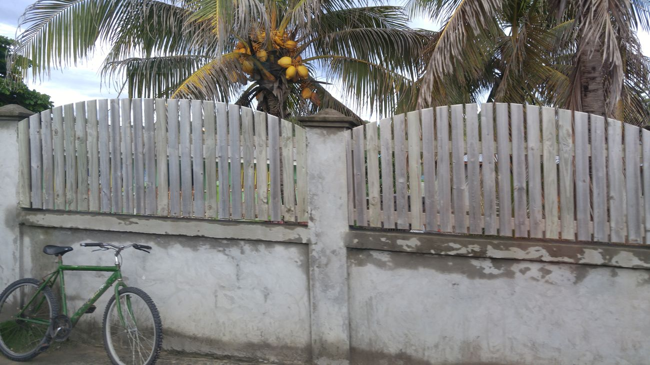 Bicycle Minimalism Outdoors Honduras