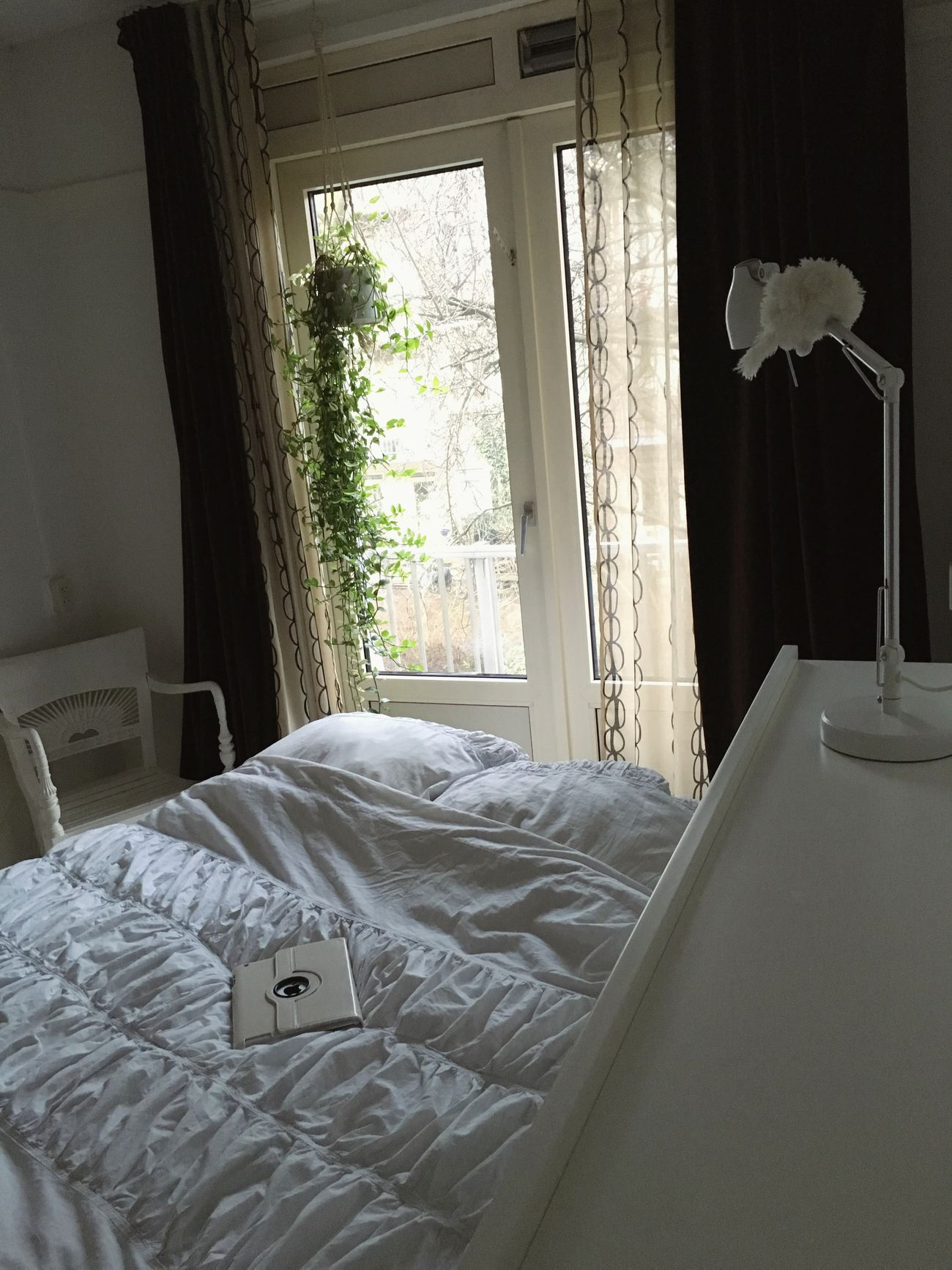 Hanging Plants White Interior Baroque Style Ipad Longest Hanging Plant Green Leaves. White Bedding White Walls