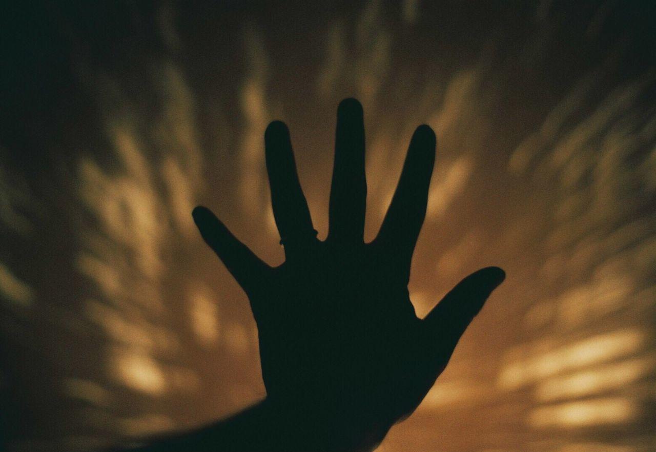 ContaxAria 35mm Film Filmcamera Film Photography Filmisnotdead Human Hand Film
