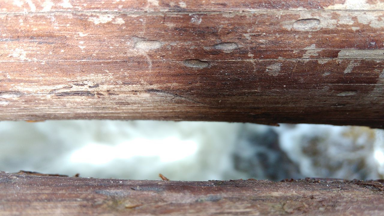 day, rough, close-up, wood - material, textured, outdoors, no people, rusty, nature