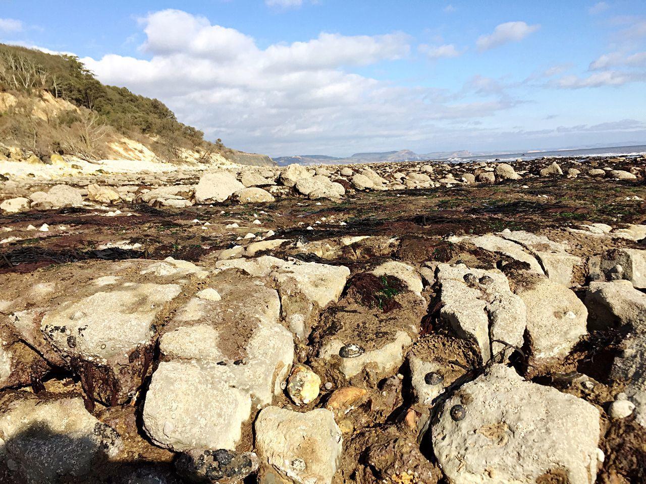 Beach Level near Lyme Regis March Fossil Coast Coastline Devon Strata  Rock Layers Cliffs Pebbles Sun Sea Jurrasic Coast Sea Level
