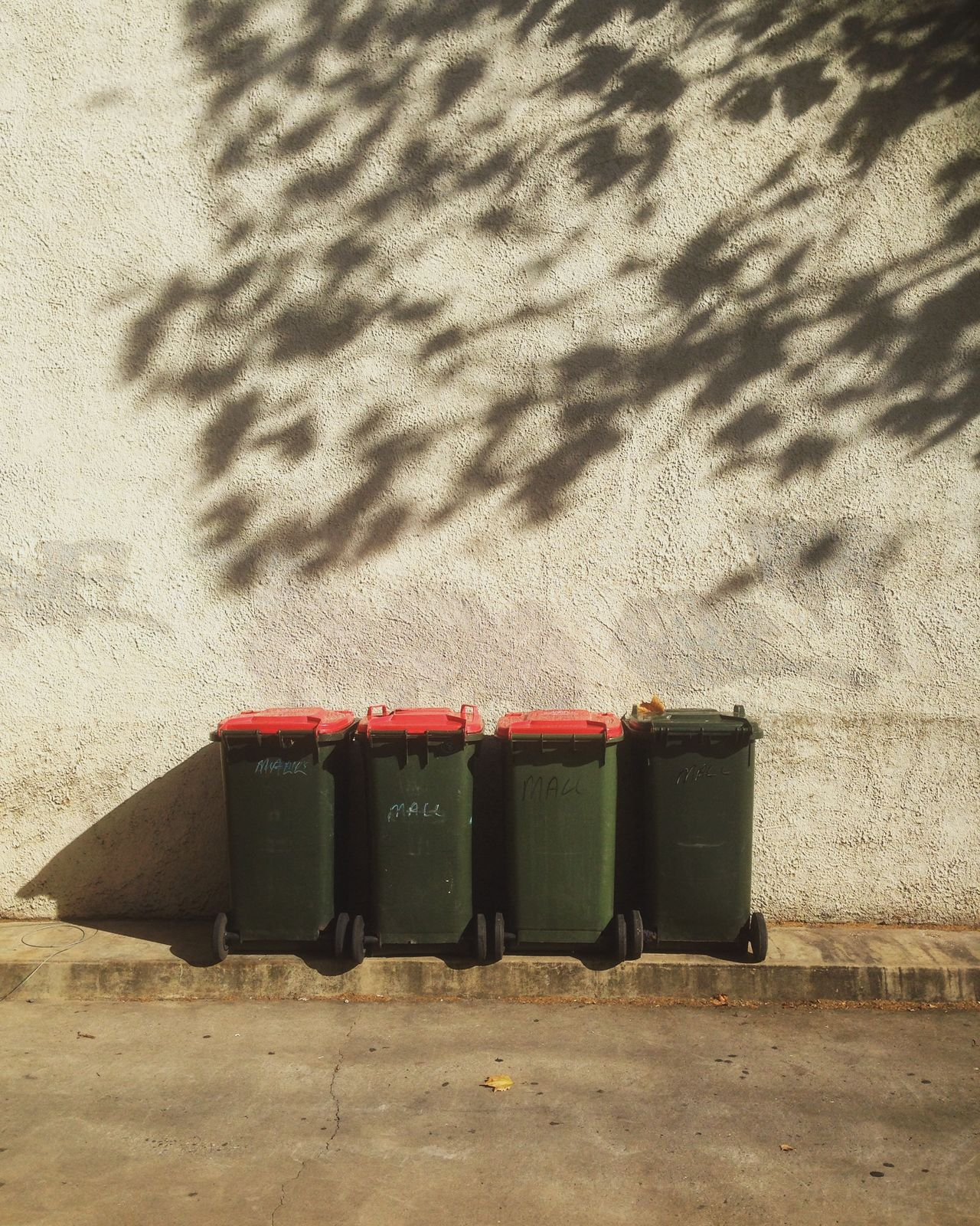 Bins & Shadows 02/06/16 Day Deterioration Factory Industry Leaves Light Light And Shadow No People Outdoors Pattern Rubbish Run-down Rural Scene Shadows Sky Stationary Street Photography Tree Trees Wall Fine Art Photography Adapted To The City The City Light