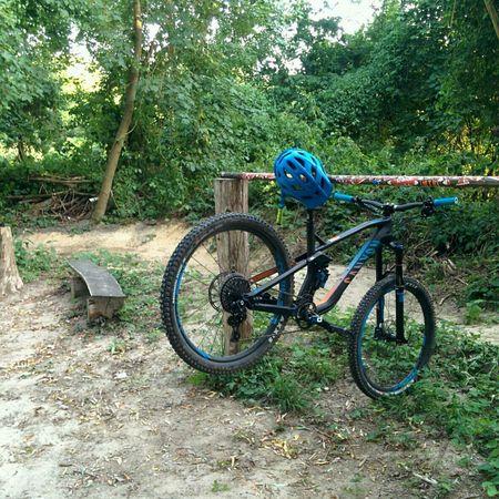 Biking Enduro Bikepark MTB