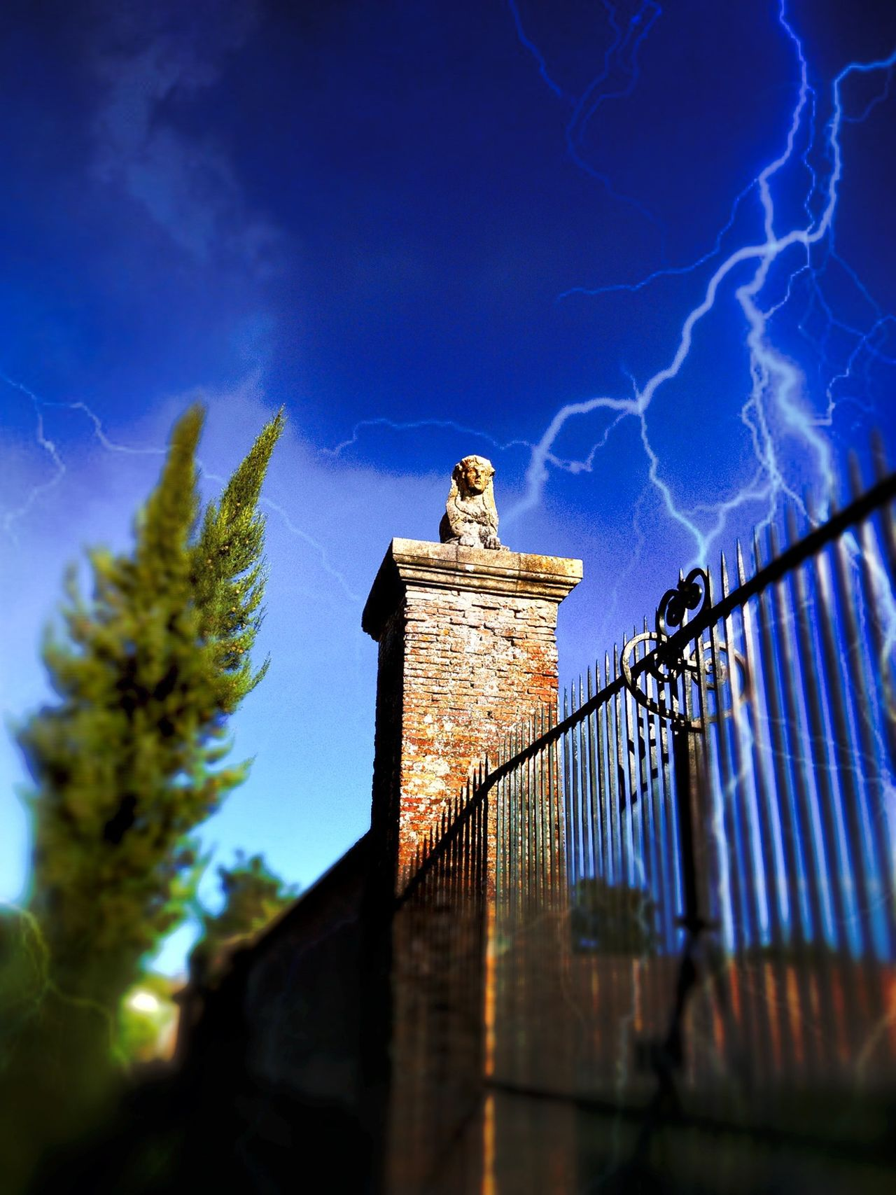 Sphinx guardian of the door Archaic Architecture Artistic Artistic Photography Carved In Stone Château Doorway Eye4photography  EyeEm Best Edits Famous Place Historic Lightning Storm Long Exposure Misterious Mitology Outdoors Riddle Showcase: December Sphinx Statue Tree Wrought Iron Gate Postprocessing