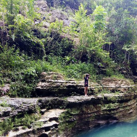 Tree Nature Backgrounds Water Day Outdoors Beauty In Nature Vacations Scenics Beauty In Nature Waterfall Green Color Waterfalls Of Time Power In Nature Waterfalls In Philippines Freshness Adventure Real People Tranquility Adults Only Leisure Activity