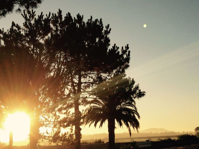Nature Ofir Sunrise Sun Moon Noeffect