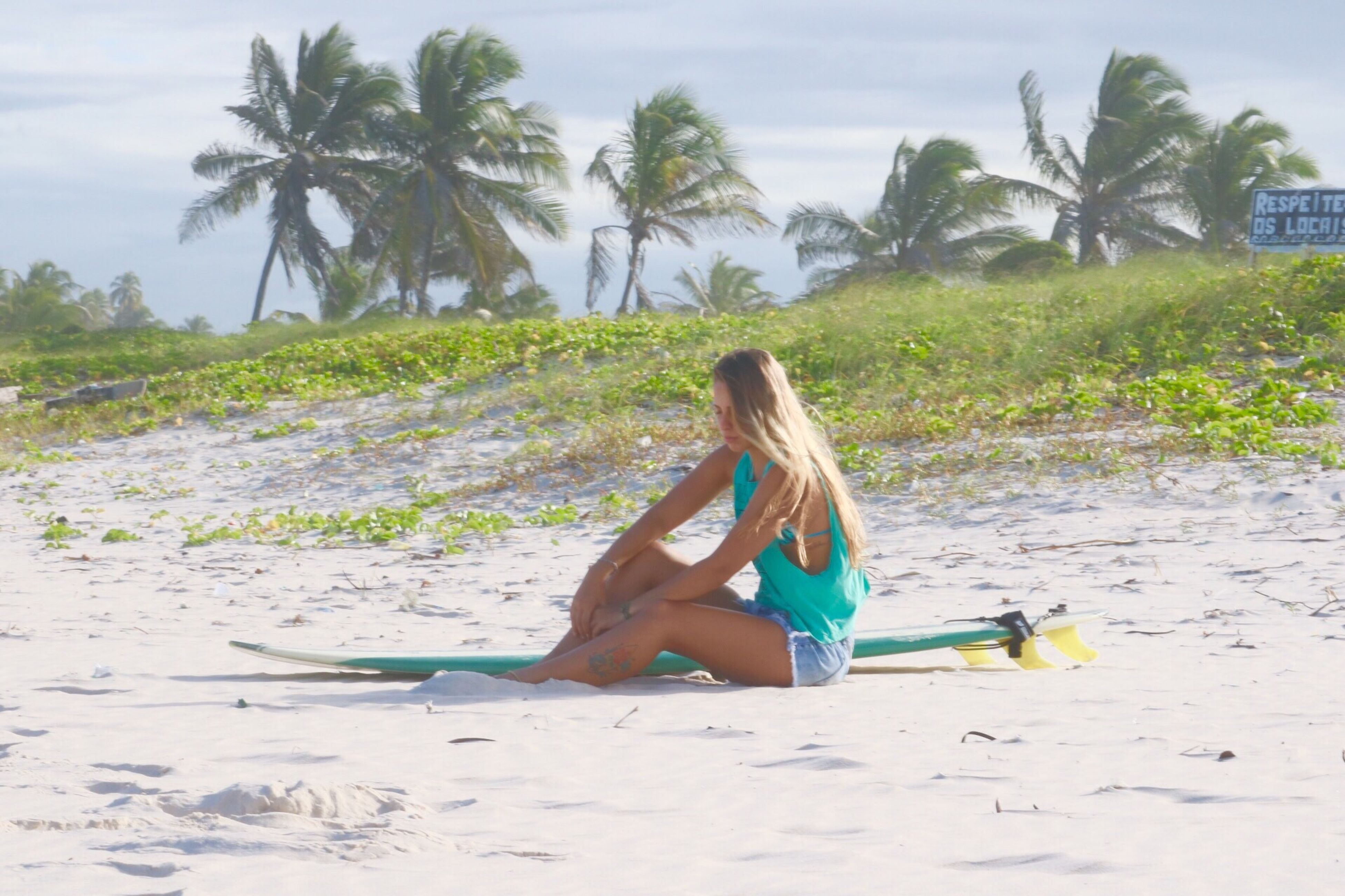 beach, sitting, relaxation, tree, palm tree, solitude, tranquil scene, full length, tranquility, sand, landscape, casual clothing, sky, young adult, young women, person, resting, day, scenics, nature, vacations, escapism, summer, non-urban scene, field, rural scene, outdoors, carefree, long hair, beauty in nature