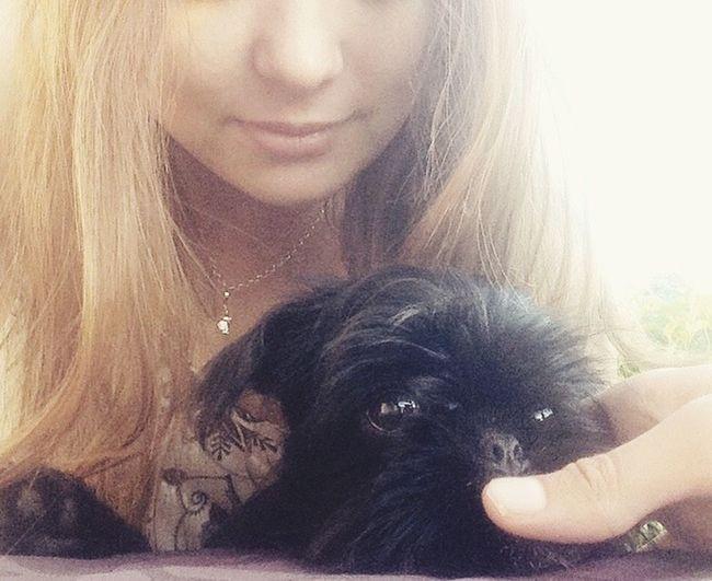 Love ♥ Dog Mops - Griffon Babydog Sunny Day☀