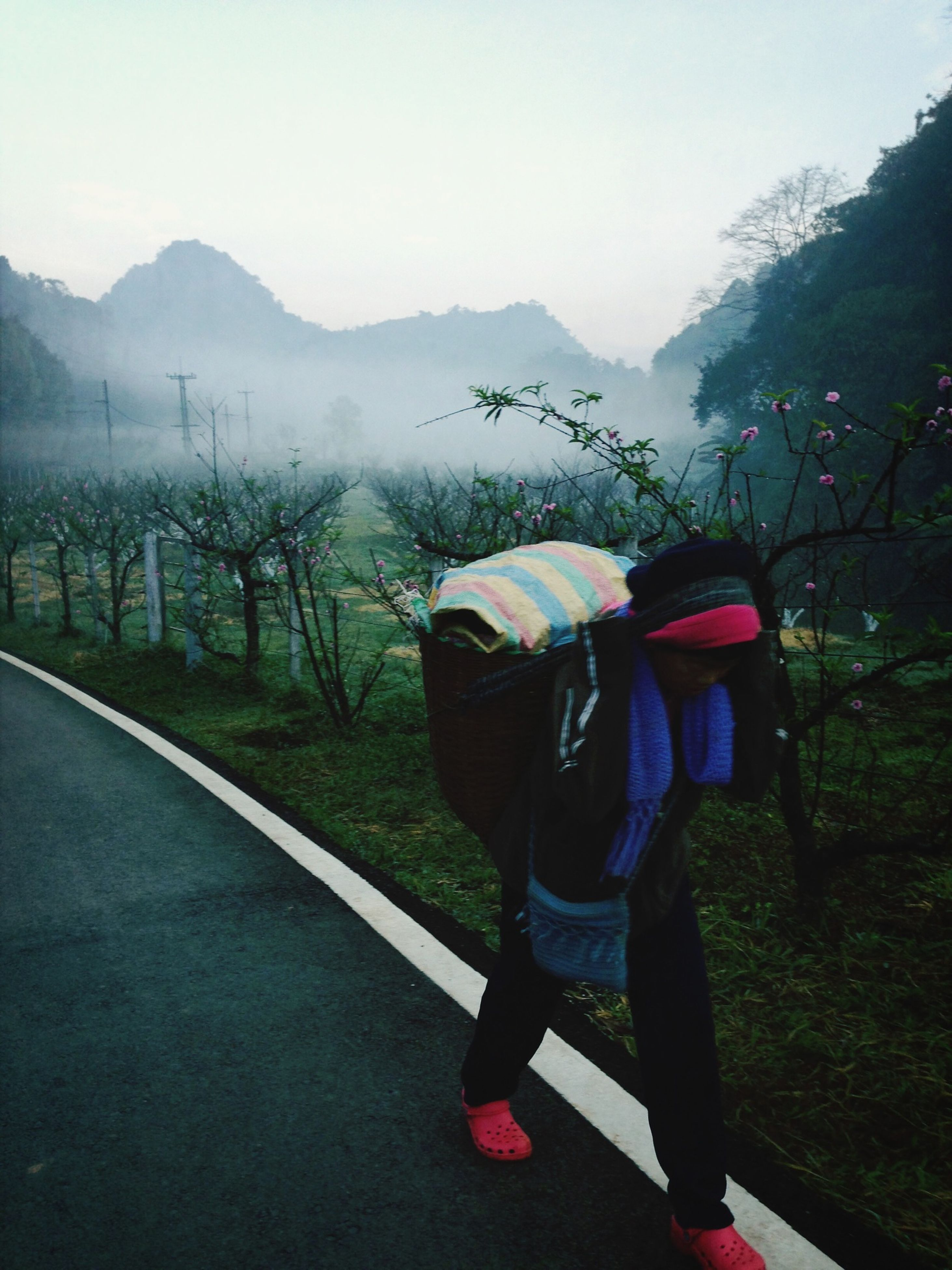 mountain, lifestyles, rear view, leisure activity, men, full length, landscape, tree, casual clothing, transportation, clear sky, mountain range, field, sky, person, nature, tranquil scene