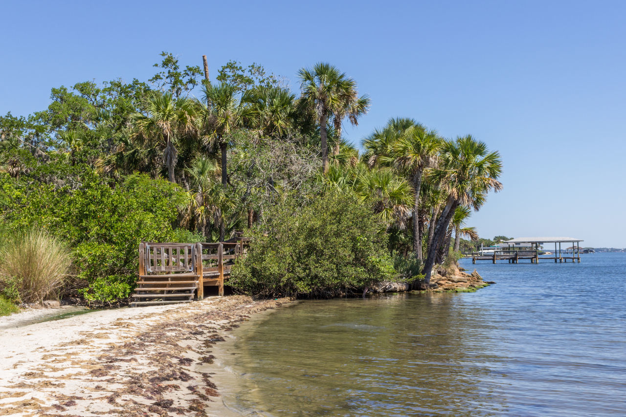 Riverside sandy beach Architecture Beach Beauty In Nature Boardwalk Built Structure Clear Sky Day Florida Nature Nature No People Outdoors Palm Tree Riverscape Riverside Park Scenics Sea Sky Tranquil Scene Tranquility Tree Vacations Water