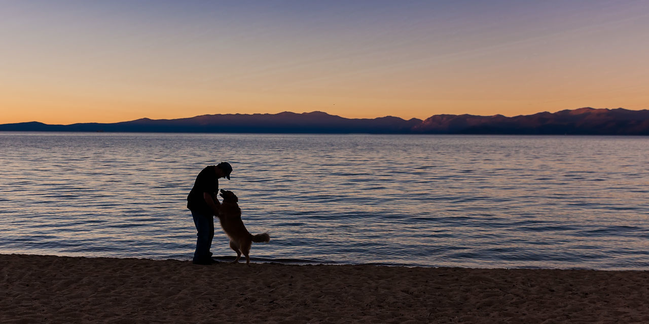 Beach Beauty In Nature Clear Sky Dog Friendship Lakeside Leisure Activity Lifestyles Men Mountain Nature Outdoors People Real People Scenics Senior Men Silhouette Sky Standing Sunset Tranquility Water