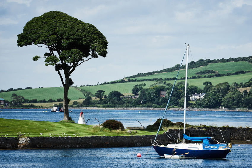 Beauty In Nature Boat Cloud Cloud - Sky Day Green Color Idyllic Mode Of Transport Nature Nautical Vessel Outdoors Portaferry Rippled Sailing Scenics Sky Strangford Tourism Tranquil Scene Tranquility Transportation Travel Destinations Tree Vacations Water