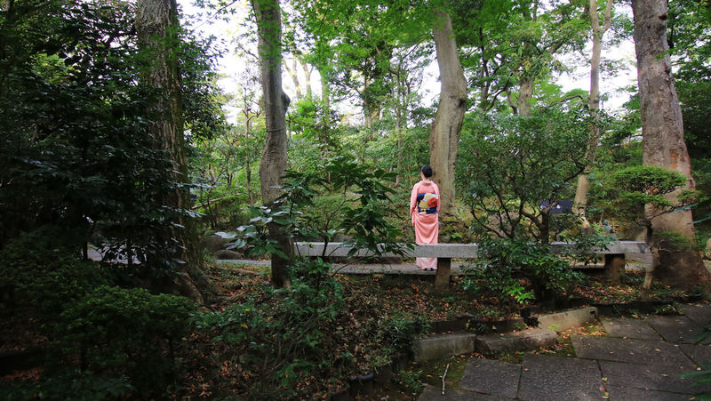 Back EyeEm Nature Lover EyeEm Nature Lovers Hugging A Tree Japan Nature Nature_collection One Person Outdoors Pink Tradition Woman In Kimono