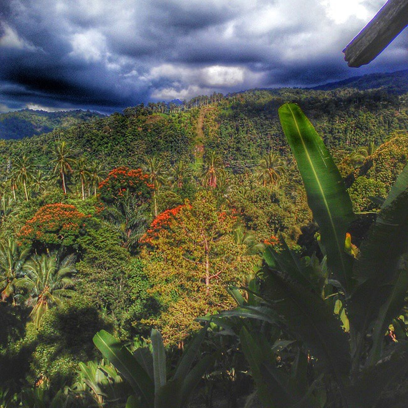 Tomohon Hdr_capture Hdr_professional HDR Manado Sulut Sid Smartphone Monopod Tinoor Ijo