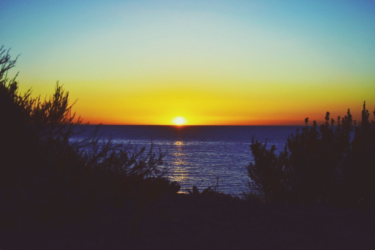 Sunset Sea Water Nature Scenics Sky Horizon Over Water Beauty In Nature Tranquility Tranquil Scene Silhouette Sun Idyllic Outdoors Tree Clear Sky No People Beach Sunrise