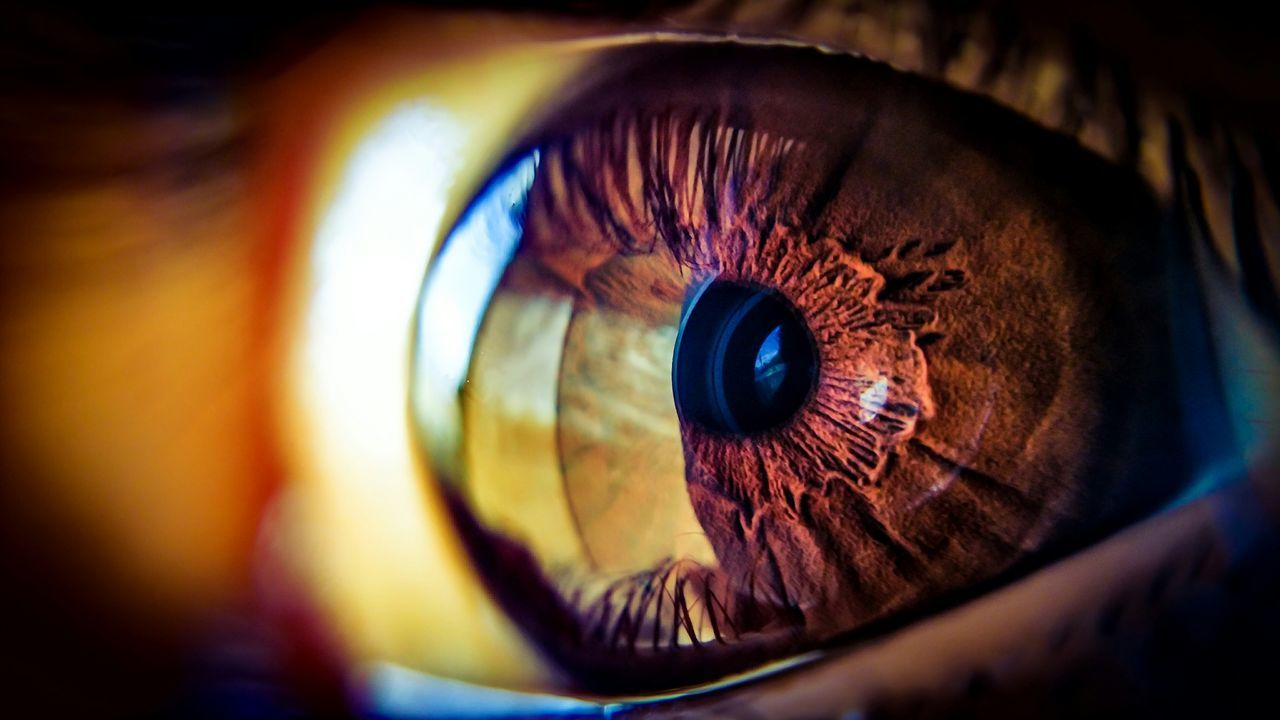 Beautiful stock photos of background, Close-Up, Day, Extreme Close-Up, Eyeball