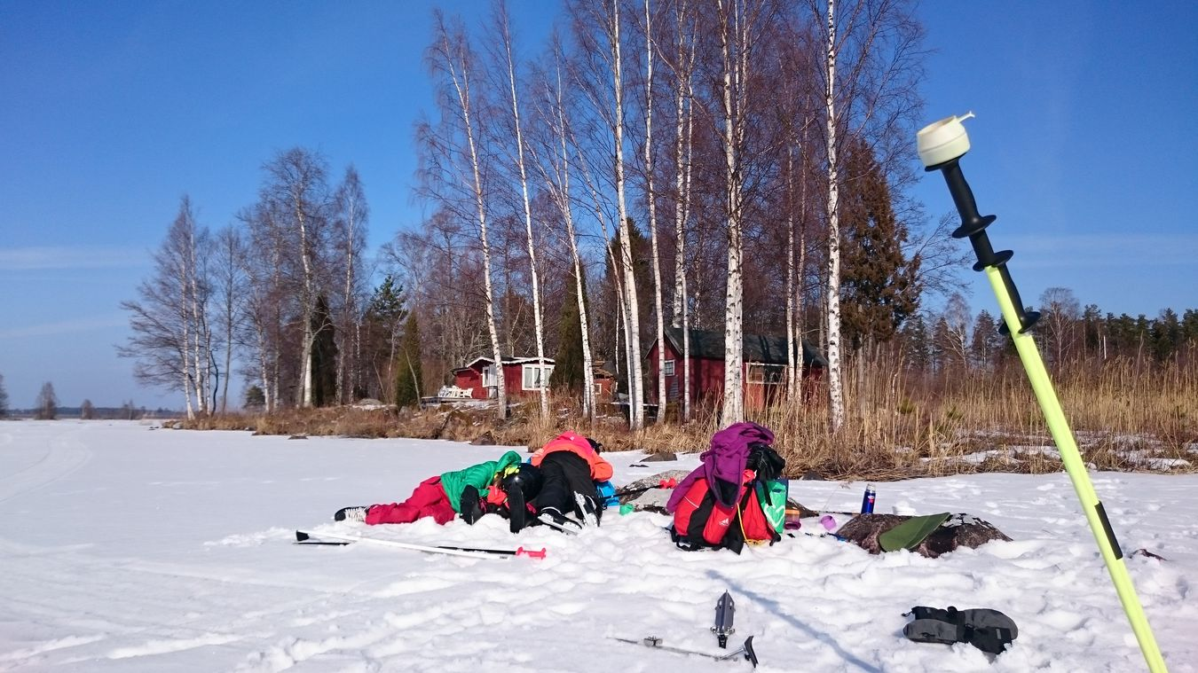Resting Ice Skating Lake Coffee Time Storsjön Birch Trees Sunny Day Cup