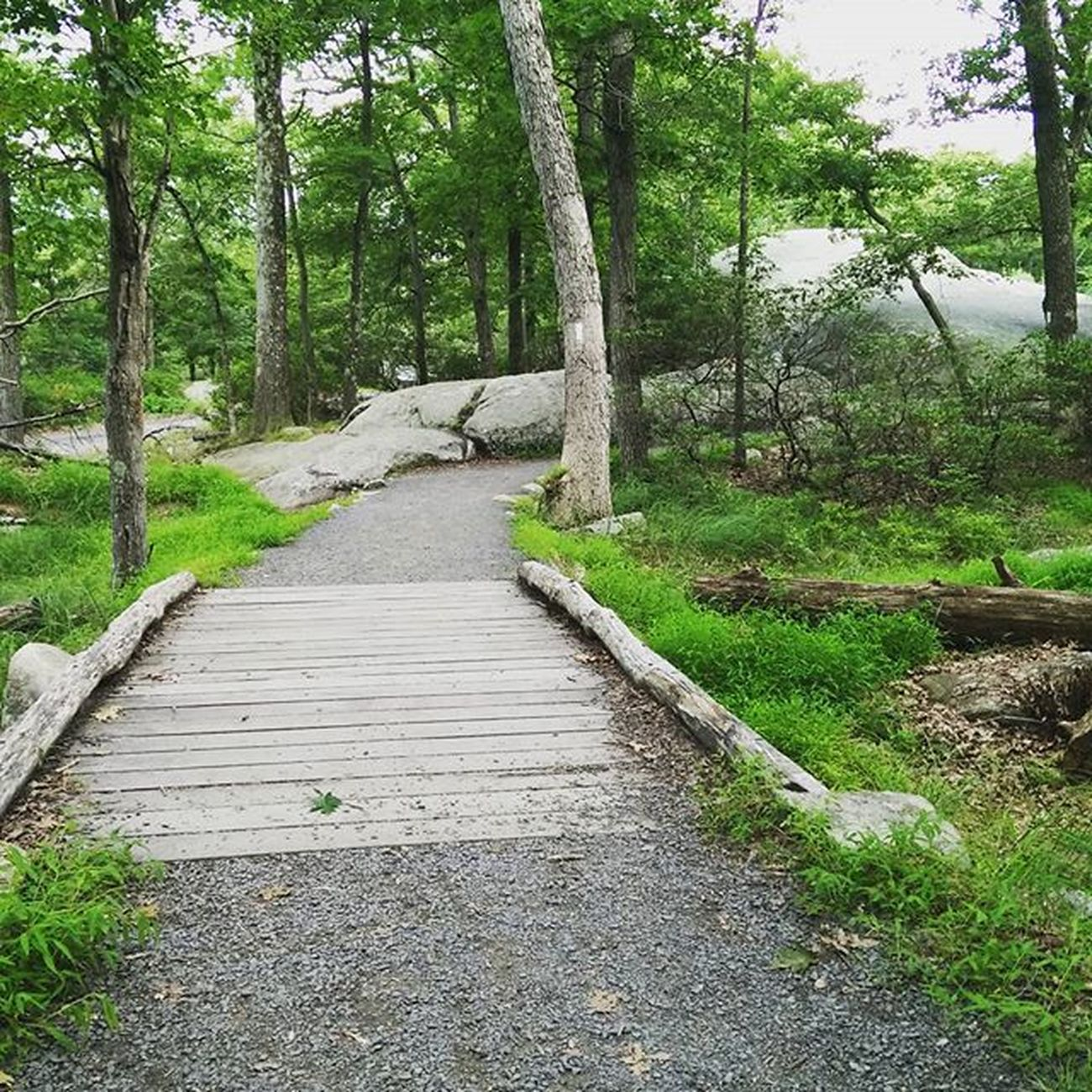 Bearmountain Bridge
