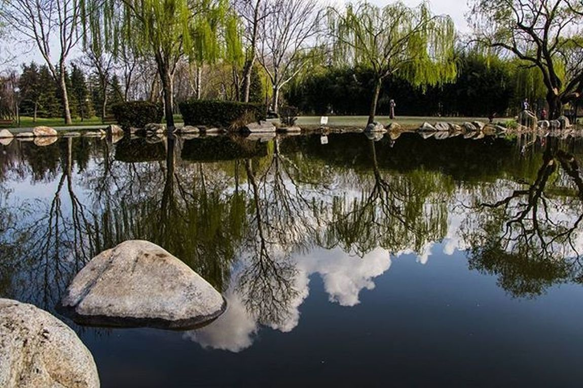 Bursa Manzara Fotoğrafçılık Landscape Beauty Worldcaptures Amazing Nature Photooftheday Bursayasam Hayatakarken Anıyakala Gununkaresi Benimkadrajım Objektifimden Bendenbirkare Reflection Botanikparkı