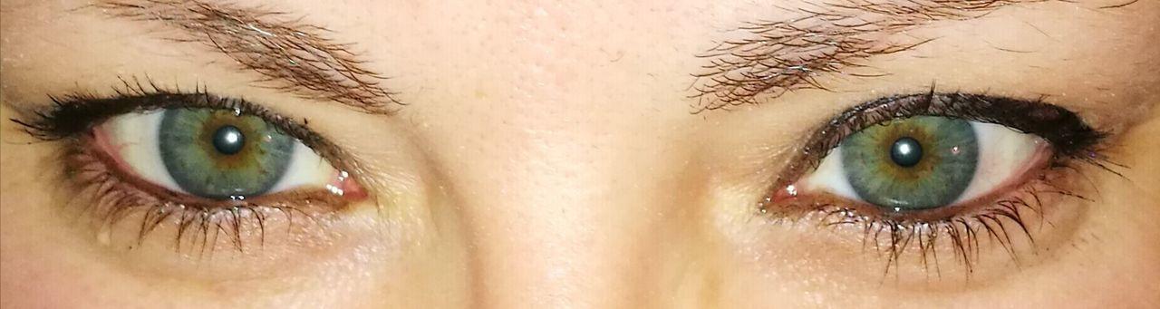 Looking At Camera Eye Close-up Iris - Eye Eyesight Real People Women Eyebrow Human Eye Eyeball Green Eyes Nofilter Thatlookinhereyes