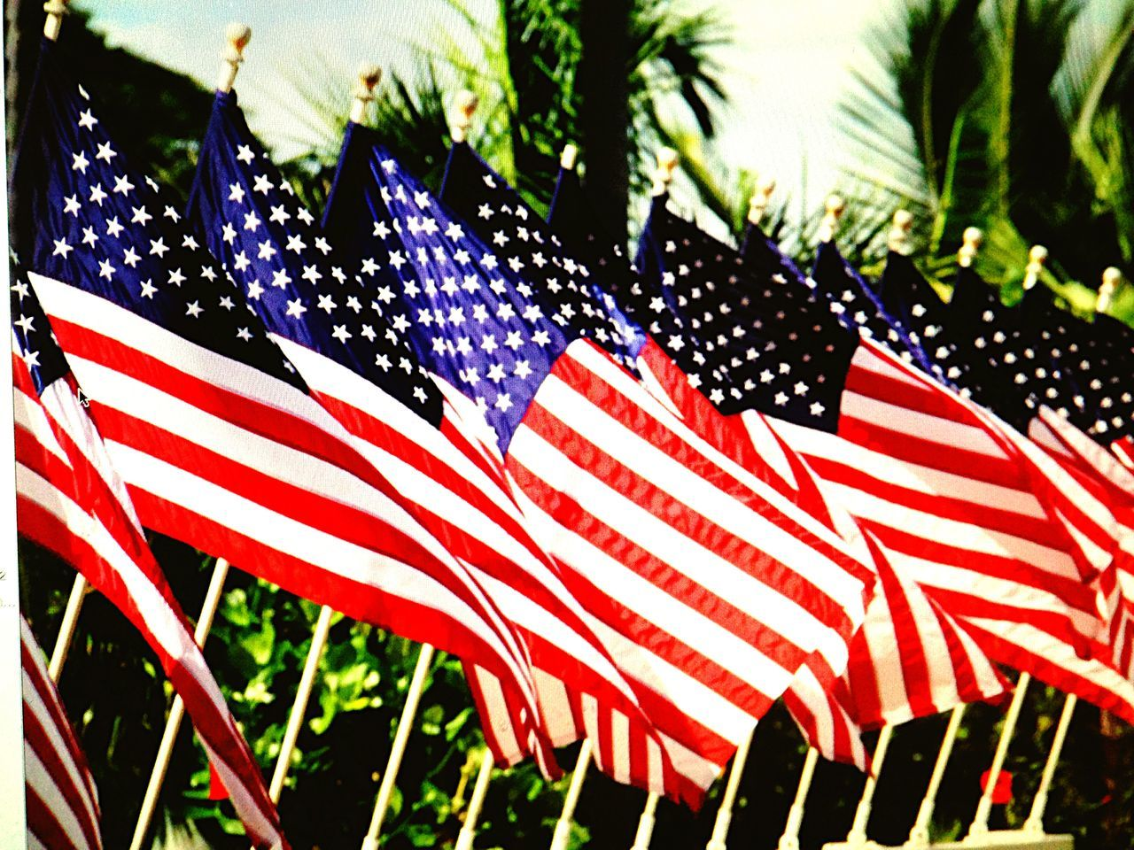 Portrait Of America - Flags RePicture Travel The Traveler - 2015 EyeEm Awards The Moment - 2015 EyeEm Awards