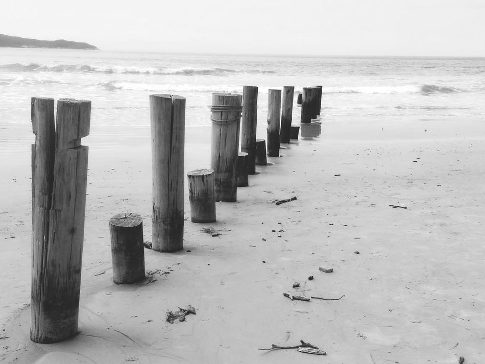 Lead the way. Beach Water Wooden Post In A Row Sea Sand Shore Tranquility Nature Tranquil Scene Beauty In Nature Outdoors Non-urban Scene Wood - Material Wave Scenics Blackandwhite Brazil