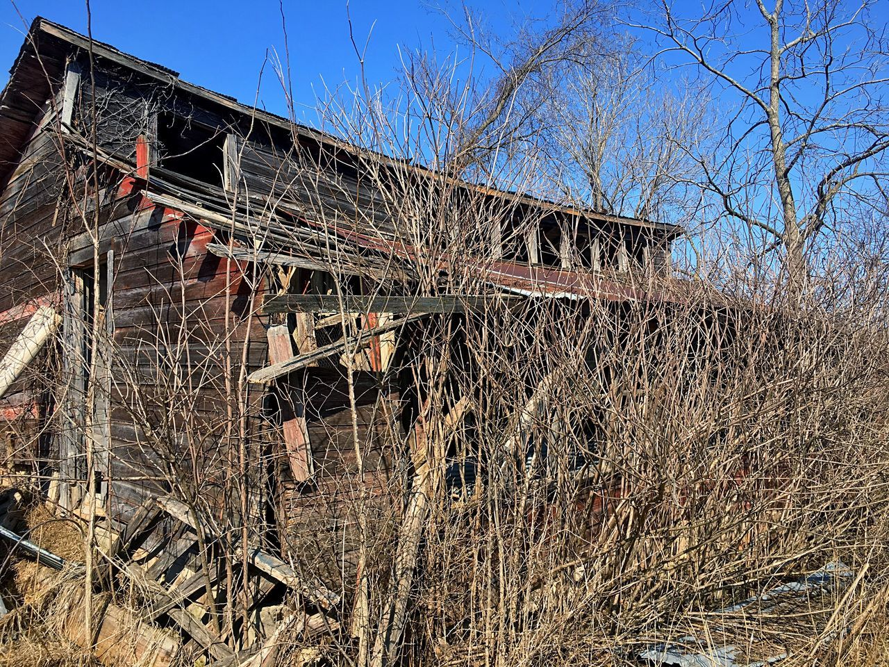Old chicken coop Chickencoop Chicken Coop Barn Oldbarn Old Barn Wood Barn Wood Built Structure Bare Tree Sky Wisconsin Abandoned Abandoned Buildings Abandoned Barn ABANDON BARNS Abandon Chicken Coop