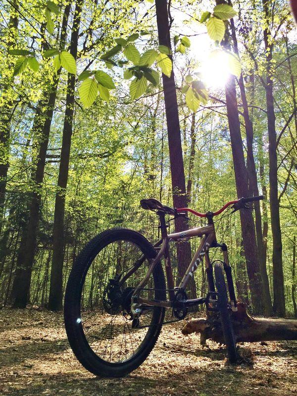 Forest Bike Kona Spring First Eyeem Photo