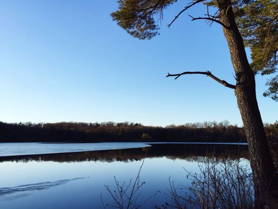 Showcase: February Blue Nature Water Reflection Trees Placid  Calm Lake Pond Quiet Places Quiet Peaceful Pure Pristine Still Landscape Sky Sky And Water Blue Sky Ice Clear Sky Clear Skies Clear Landscapes With WhiteWall