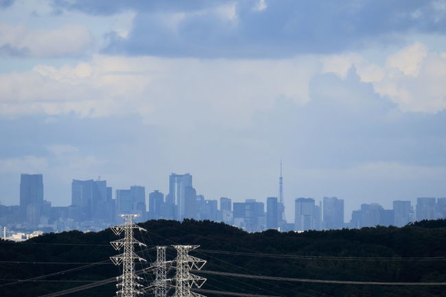 Cityscapes 東京タワー 鉄塔♡Love Pylons