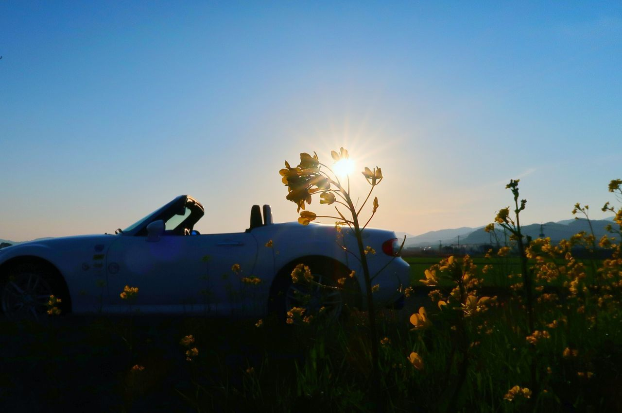 Springtime Spring Flowers Spring Spring Is Coming  Sky Skyview Sun Sunset Sunlight Sunbeam Blue Nature Beauty In Nature Car Clear Sky Outdoors Transportation Beautiful Mazda Mx5 Miata マツダ ロードスター Road Beautiful Sunset