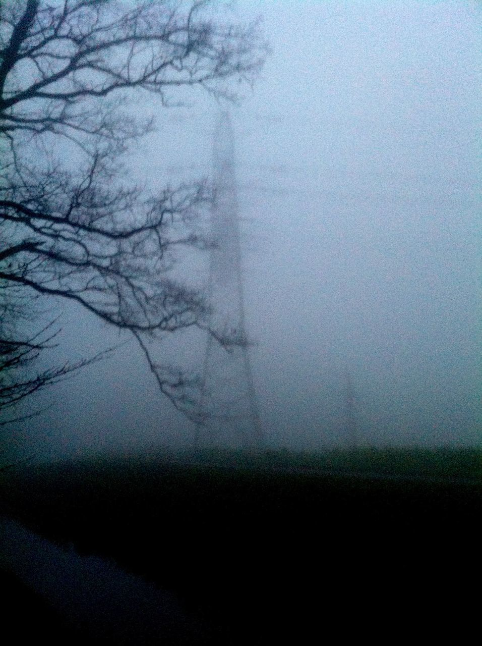 fog, landscape, mist, hazy, nature, foggy, no people, bare tree, tranquility, beauty in nature, scenics, tree, day, outdoors, sky