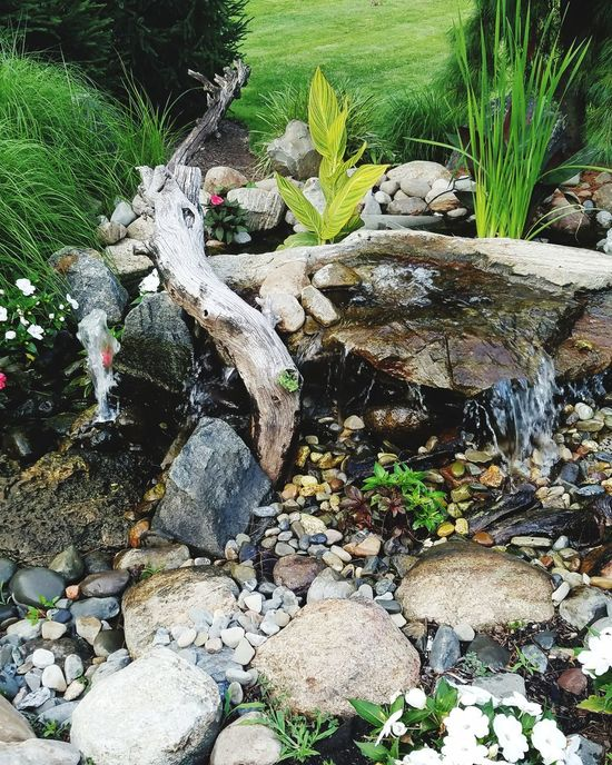 Rock - Object Outdoors Nature No People Water Beauty In Nature Meditation Place Meditation Garden Day High Angle View Pebble Plant Growth Grass