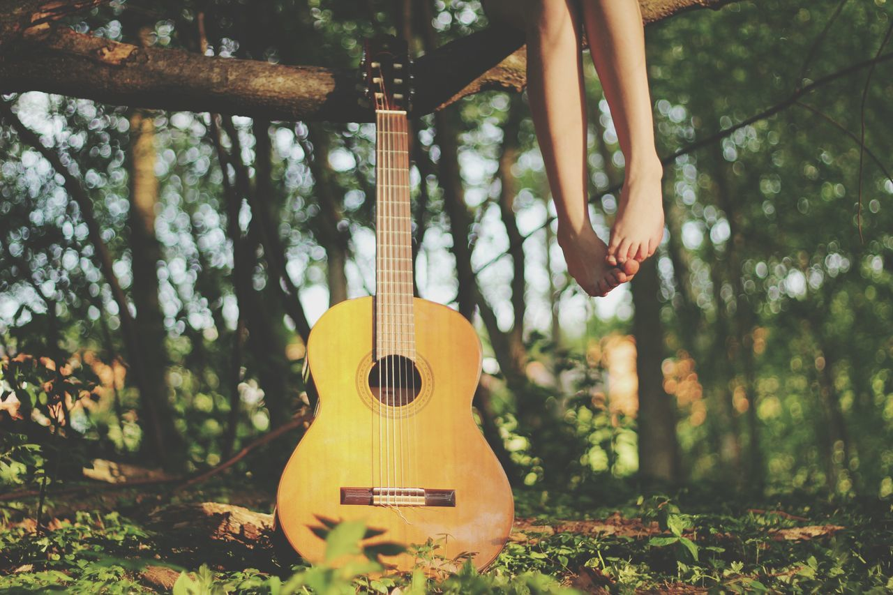 Beautiful stock photos of guitar, Barefoot, Close-Up, Entertainment, Focus On Foreground