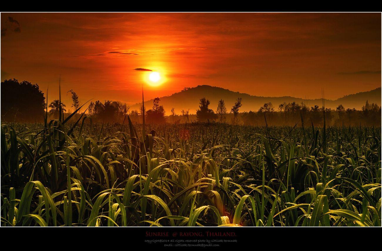 Sunrise@Rayong, Thailand. Thailand_allshots Landscape_Collection Sun-collection Travel