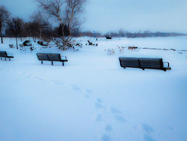 Winter Blues Absence Lake Nipissing Landscape Northern Ontario Outdoors Park Park Bench Season  Snow Winter