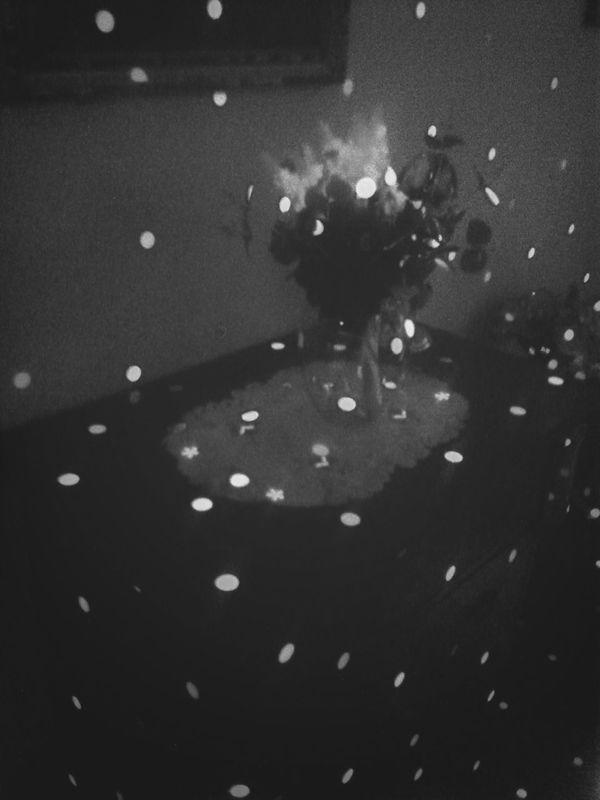 Black Rose Obssession Infinity
