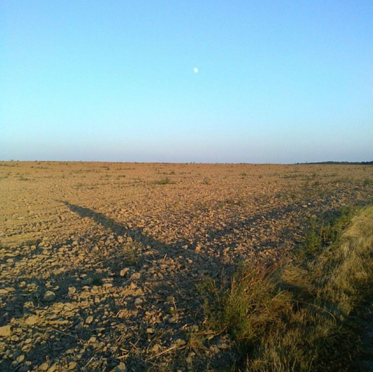 Sommer2012 Sunshine Moon Blue Sky Shadow Fields Of Gold Beautufulwiew Foodprints Hungary Enjoying Life Ownphotography