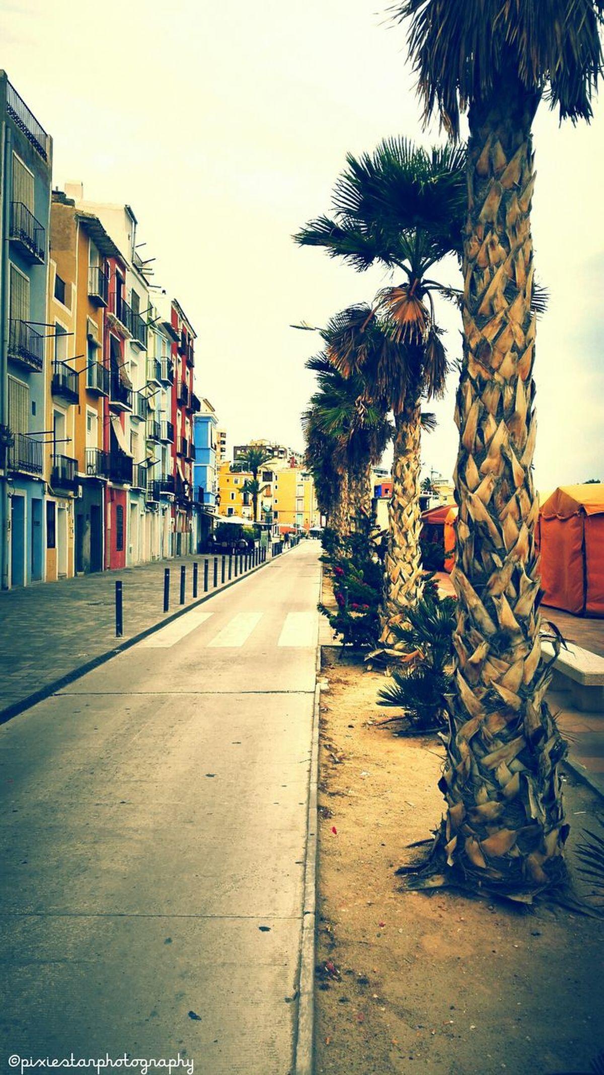 Villa Joyosa Spain Spaın Beach Sand Palm Trees Colours Villa Joyosa Buildings Houses And Homes