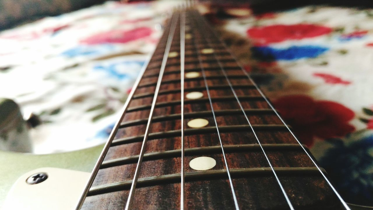 music, musical instrument, musical instrument string, guitar, arts culture and entertainment, fretboard, woodwind instrument, indoors, close-up, no people, day
