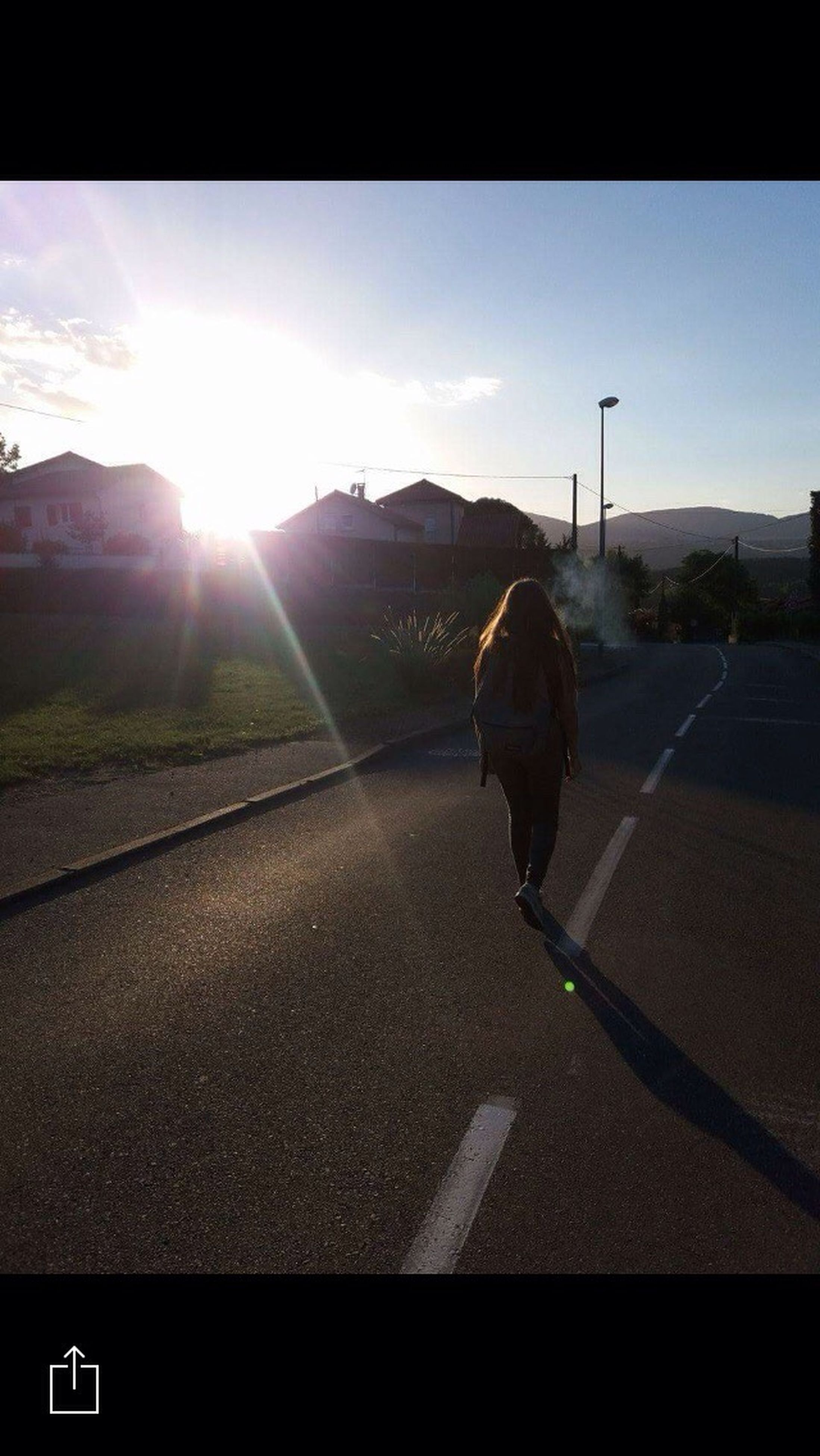 transportation, road, road marking, sunbeam, one animal, mammal, clear sky, lens flare, selective focus, the way forward, day, sun, domestic animals, cloud, countryside, sky, outdoors, mountain, tranquil scene, solitude, surface level