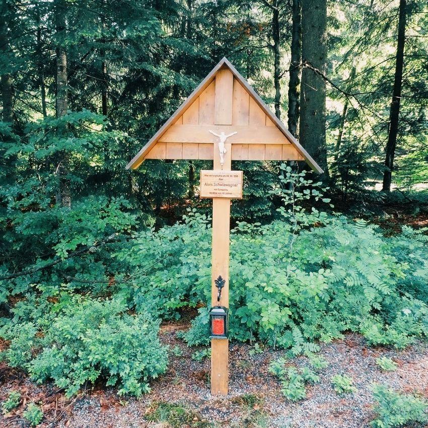 Pray Shrine Forest Nature Cristianity God