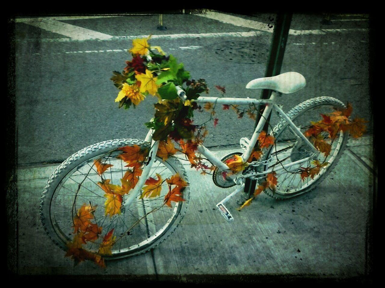 Bicycle Ghost Bike Chelsea New York