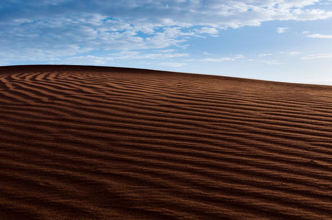 Moroccan desert Adventure Barren Beauty In Nature Desert Explore Hot Landscape Minimalistic Morocco Nature Outdoors Remote Sand Sand Dune Solitude Summer Tranquility Travel Trip