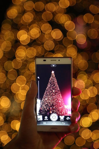 30 December 2015, Scanderbeg Square Tirana, Albania Albania Backgrounds Canon5dmarkiii Christmas Decor Endofyear Evening Full Frame Happynewyear Ideas Lights Mobile Phone Nofilter People Photography Themes Smart Phone Tirana Tree