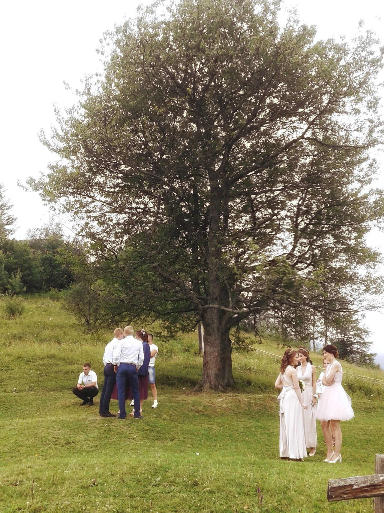 Togetherness Wedding Tree Grass People Nature Outdoors Girls Wedding Photography Yaremche Ukraine Young Adult Men Adult
