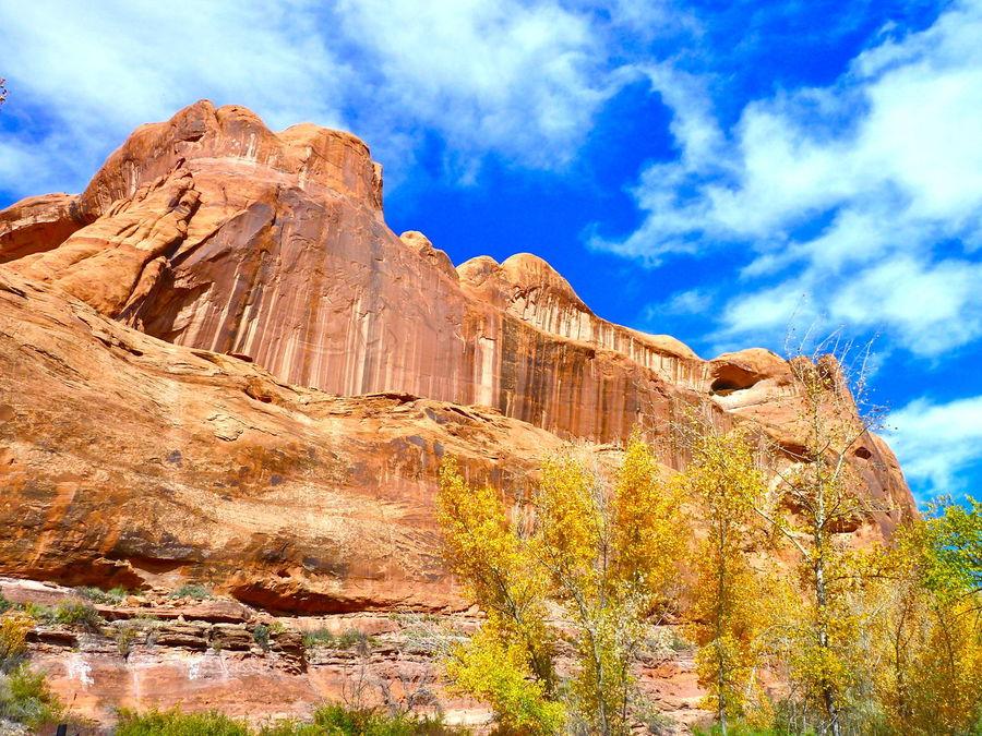 Moab: Rock climbers dreamland Moab, Utah Rock Formation RockClimbing Redrock Outdoors ViewfrOmbeLOw Magnificent Flatrock Nature Nature Photography Landscape